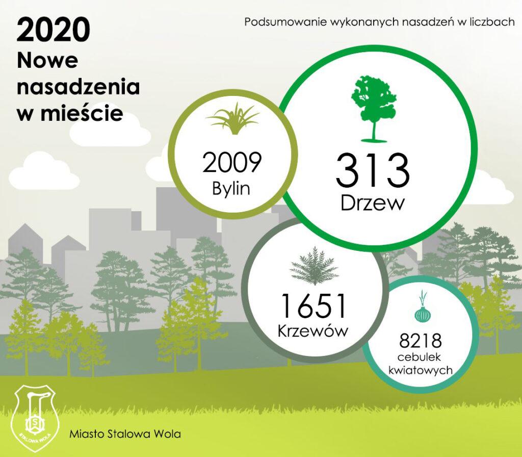 grafika nowe nasadzenia w mieście w liczbach