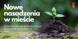 Zielona sadzonka, herb miasta Stalowej Woli, Napis: nowe nasadzenia w mieście. Podsumowanie wykonanych nasadzeń w liczbach 2020